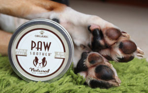 Boxer's paws moisturized with Natural Dog Company Paw Soother